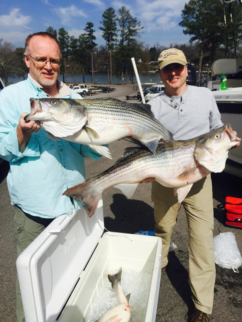 Smith lake smith lake alabama fishing report for Lake greenwood sc fishing report